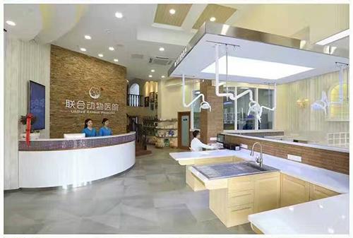 宠物医院室内设计-武昌君临天下联合动物医院